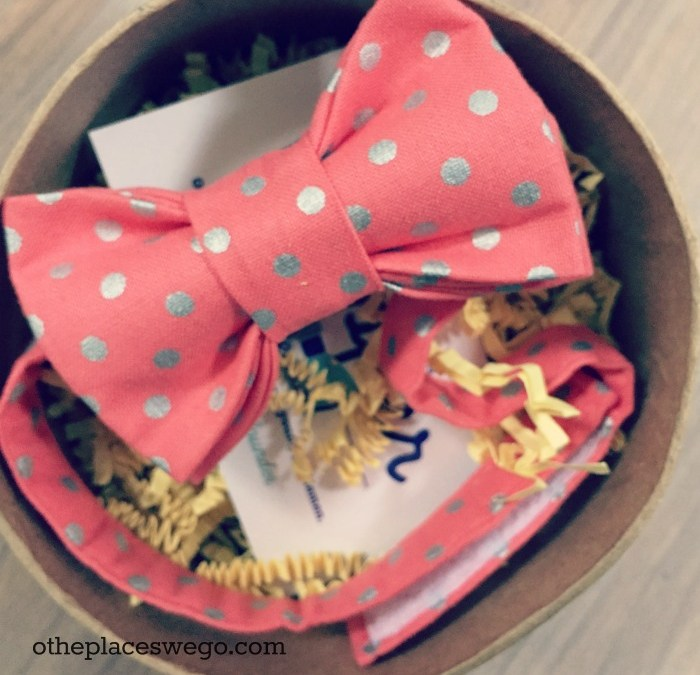 Review and giveaway: Adorable bow ties from Chicago-based The Little Dapper Collection