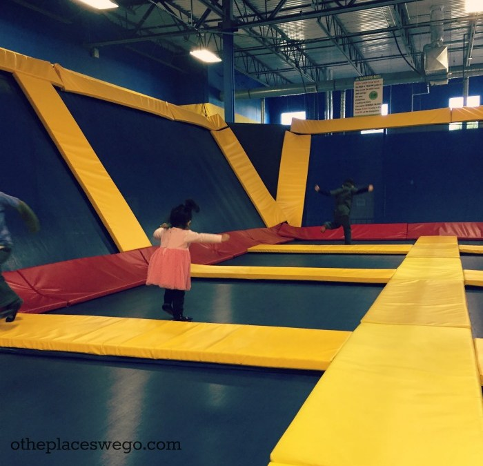 Family Fun Review: Sky HIGH Sports Naperville