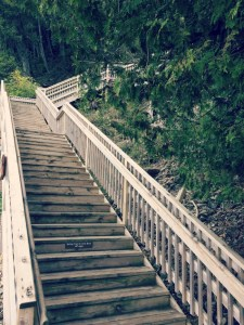 Biking Mackinac Island - Arch Rock Steps