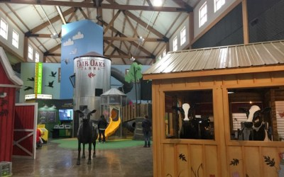 6 Reasons to Head to Fair Oaks Farms for your next Staycation