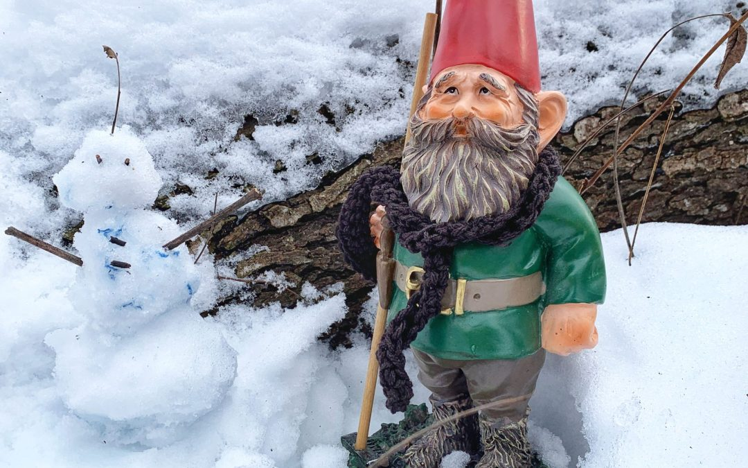 Harrison Benwell: Hiking and Searching for Gnomes