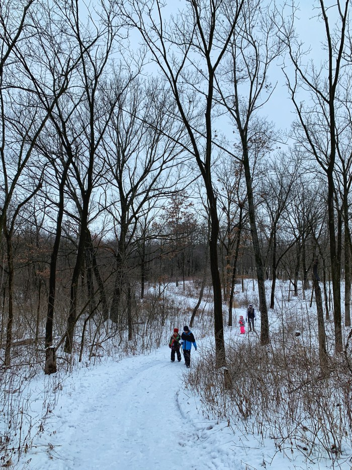 Explore the outdoors with a winter hike at Marengo Ridge Conservation Area in McHenry County.  Explore the trails by day and by candlelight.