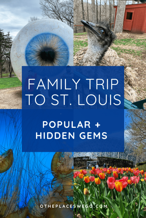 Plan your St. Louis family trip with popular museums, zoo, the Arch, and hidden gems like a bird sanctuary and a bison park.