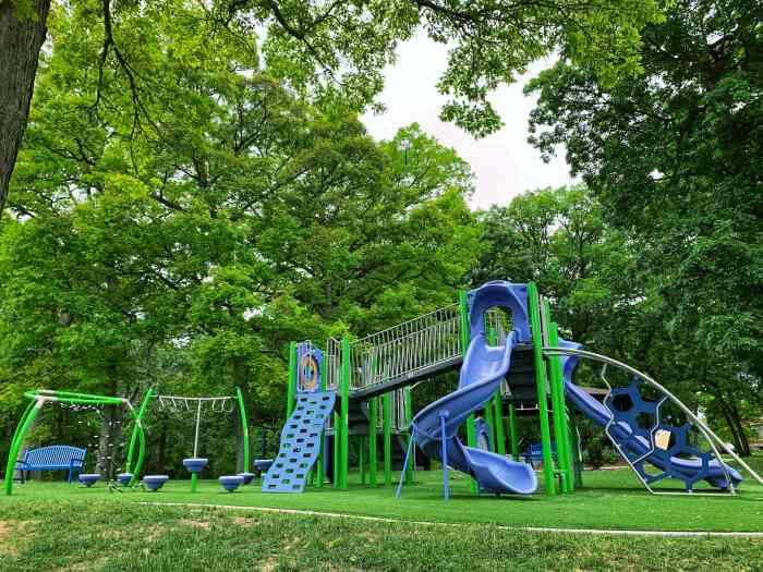 Have a family fun day at Lords Park in Elgin with a new playground, a museum, a small zoo (with bison!), trails, and more!