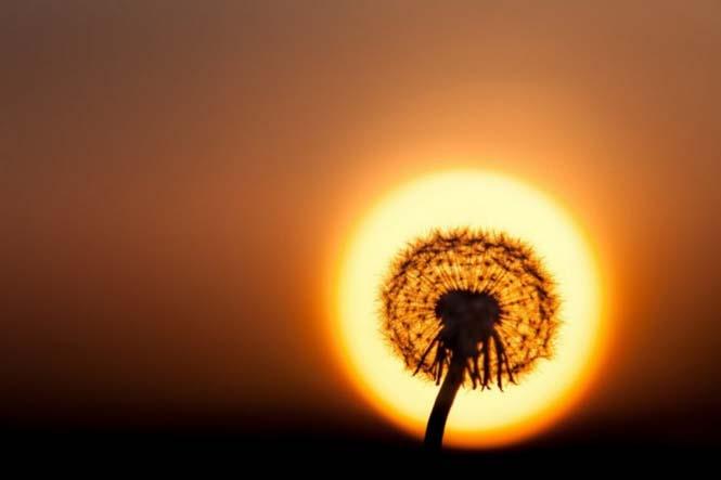 Η φύση σε εκπληκτικές φωτογραφίες χωρίς Photoshop (2)