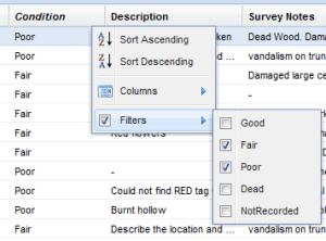 TreeSafety column filter