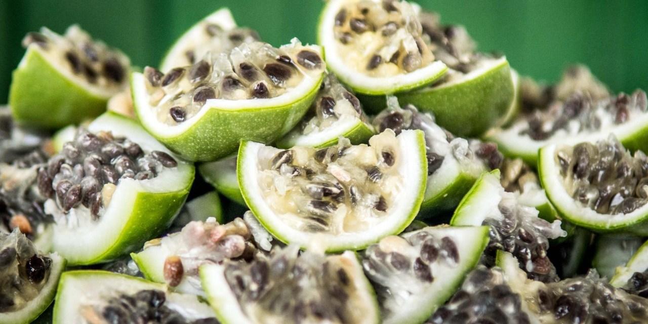 Primeiro dia do Terra Madre Brasil tem ingredientes da caatinga baiana em destaque