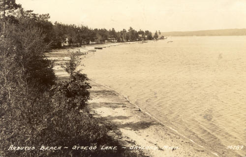 Image result for otsego lake, gaylord michigan