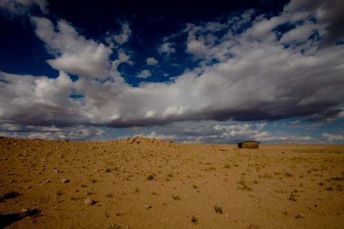 Mongolian Horizon