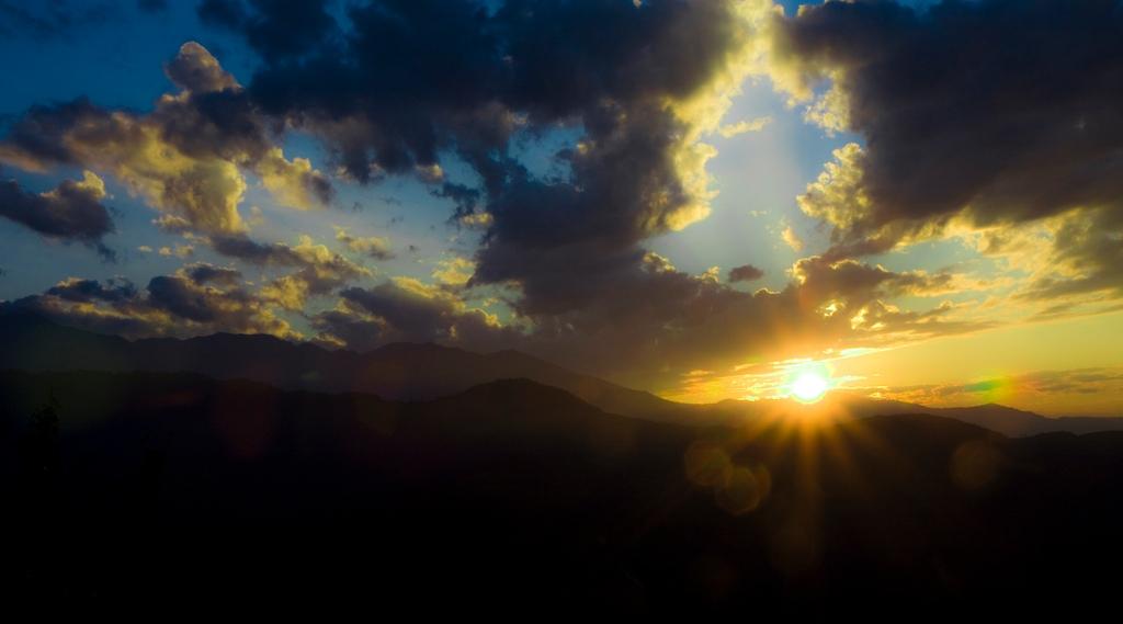 puma sunrise