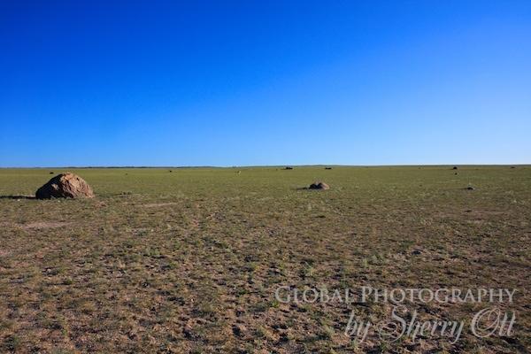 Gobi Desert flat