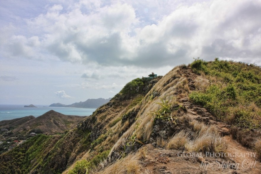 ridge trail hike oahu