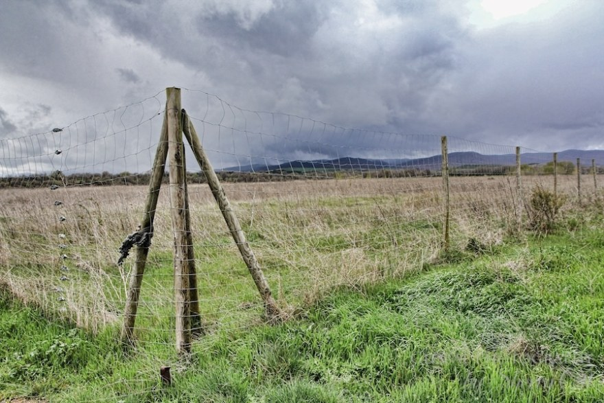 storm fence