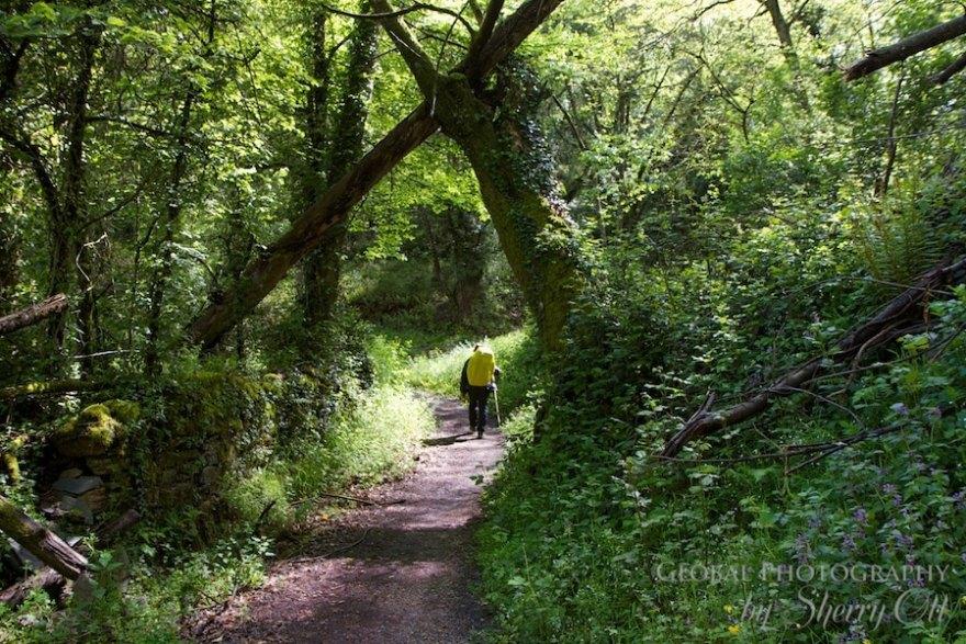 hiking trail spain