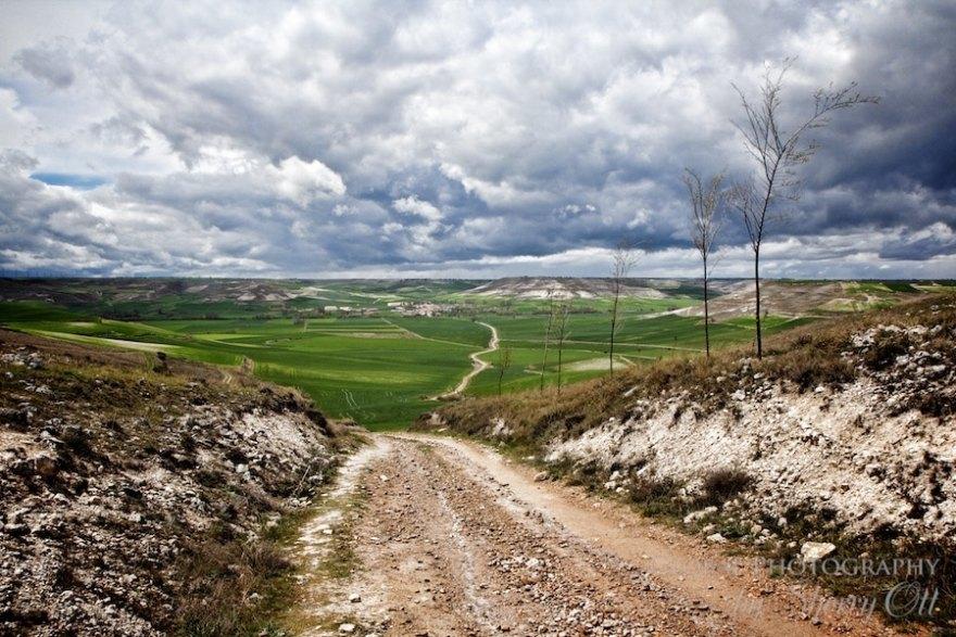 camino trail