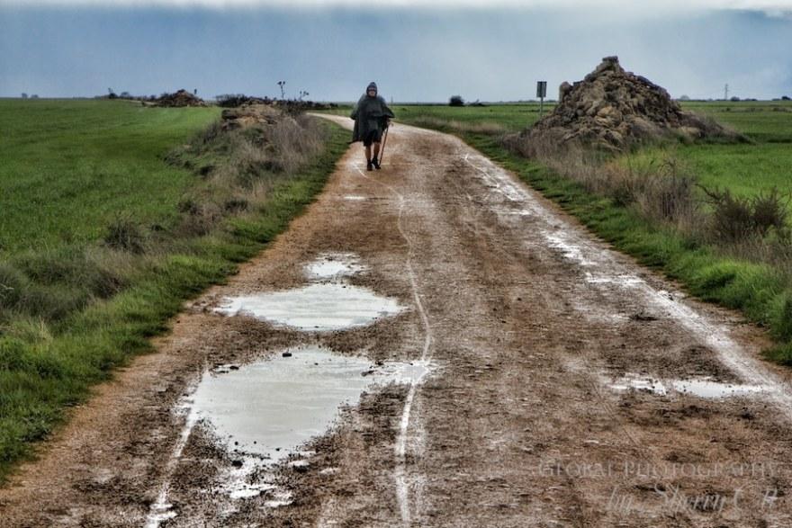 rain camino