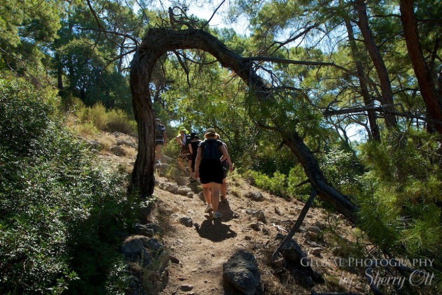 Walking through a bended tree on the lycian way