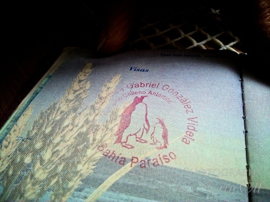 Antarctica passport stamp