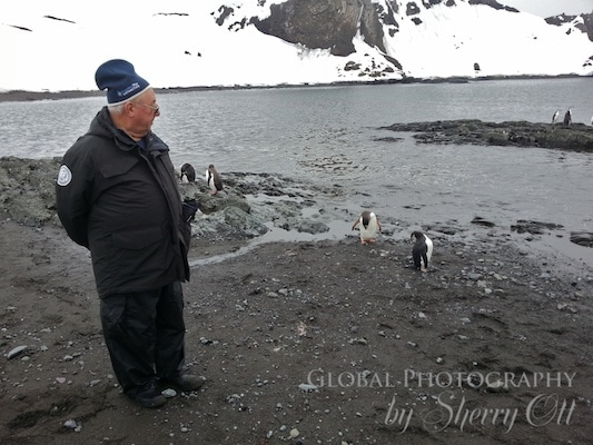 Dad checking out the penguins