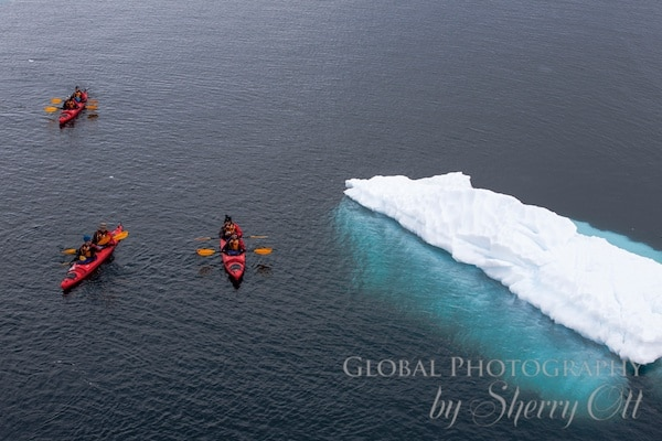 Getting close to icebergs