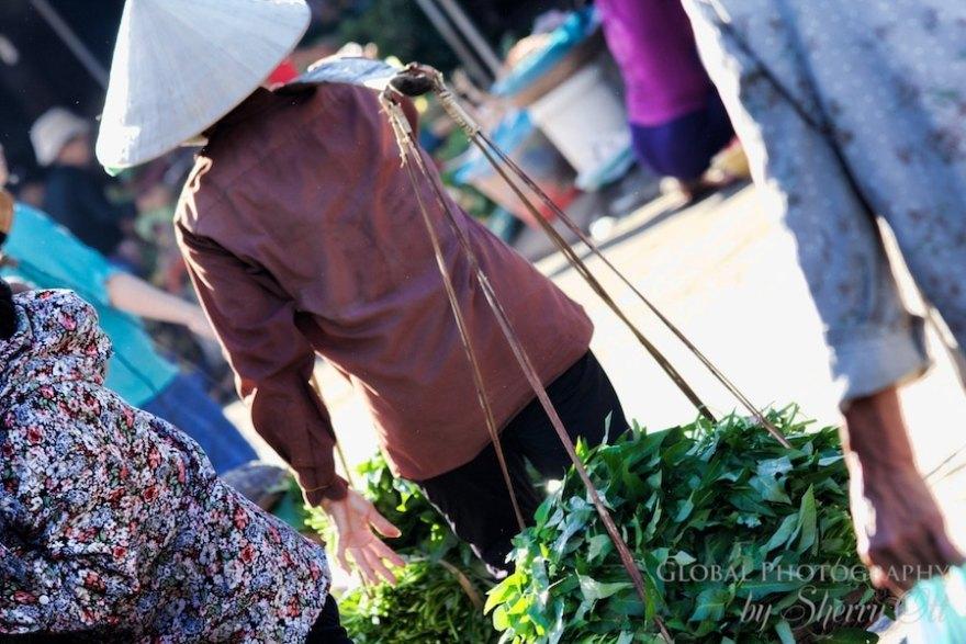 vietnam market herbs