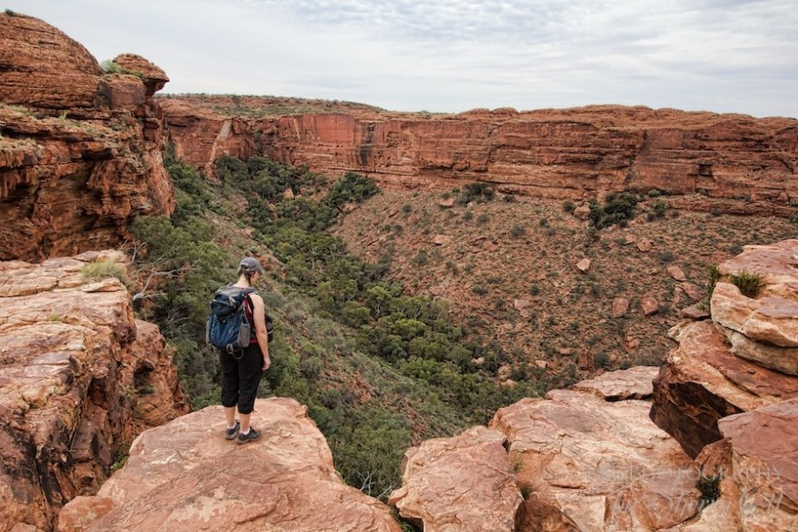 Kings Canyon Rim Trail