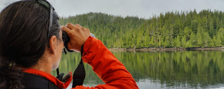 Bear watching great bear rainforest