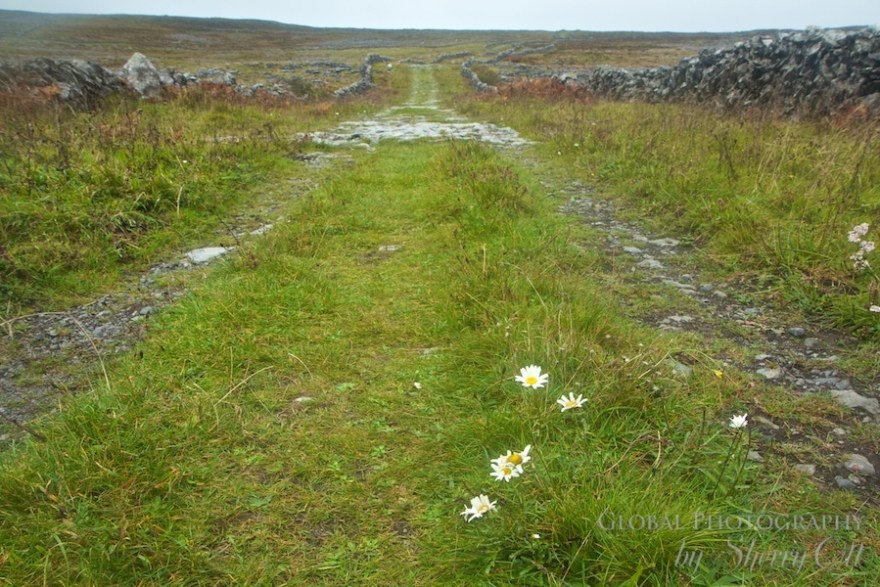 burren ireland walking trails