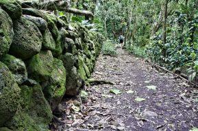 halawa valley hike molokai 9