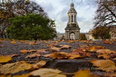Fall Colors Ireland