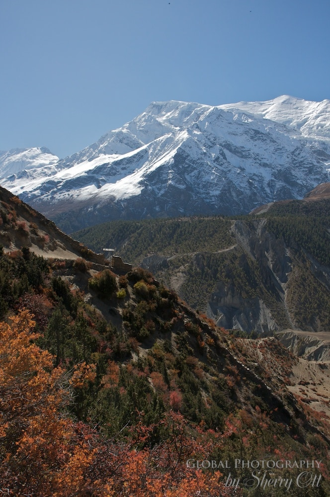 Fall Colors Nepal