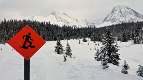 Snowshoeing trails marked all over Alberta