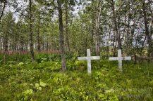 Pilgrim hot springs cemetery