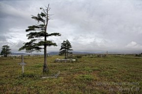 things to do in Nome cemetery