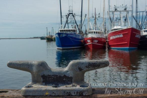 New Bedford Fishing