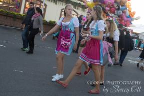 dirndl fashion