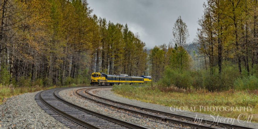 Alaska Train fall colors