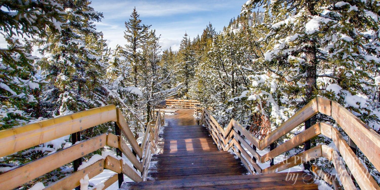 sulphur mountain boardwalk