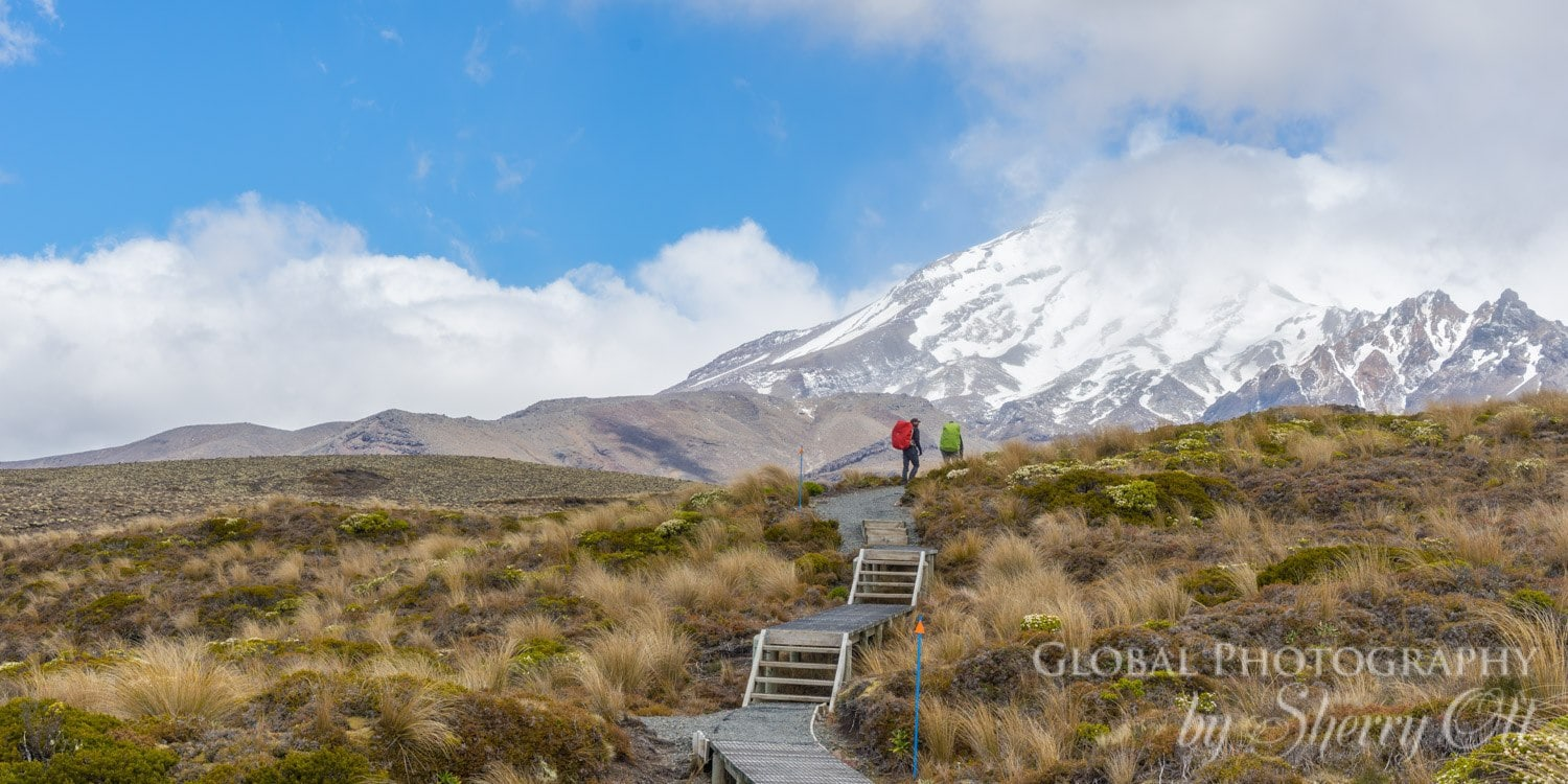 lesser known new zealand hikes