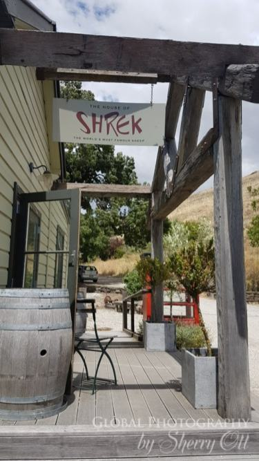 Shrek Museum Tarras