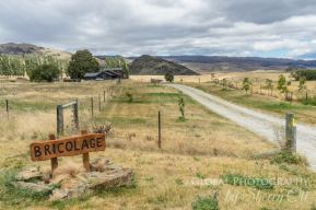 New Zealand local experience