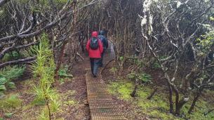 Enderby New Zealand Island
