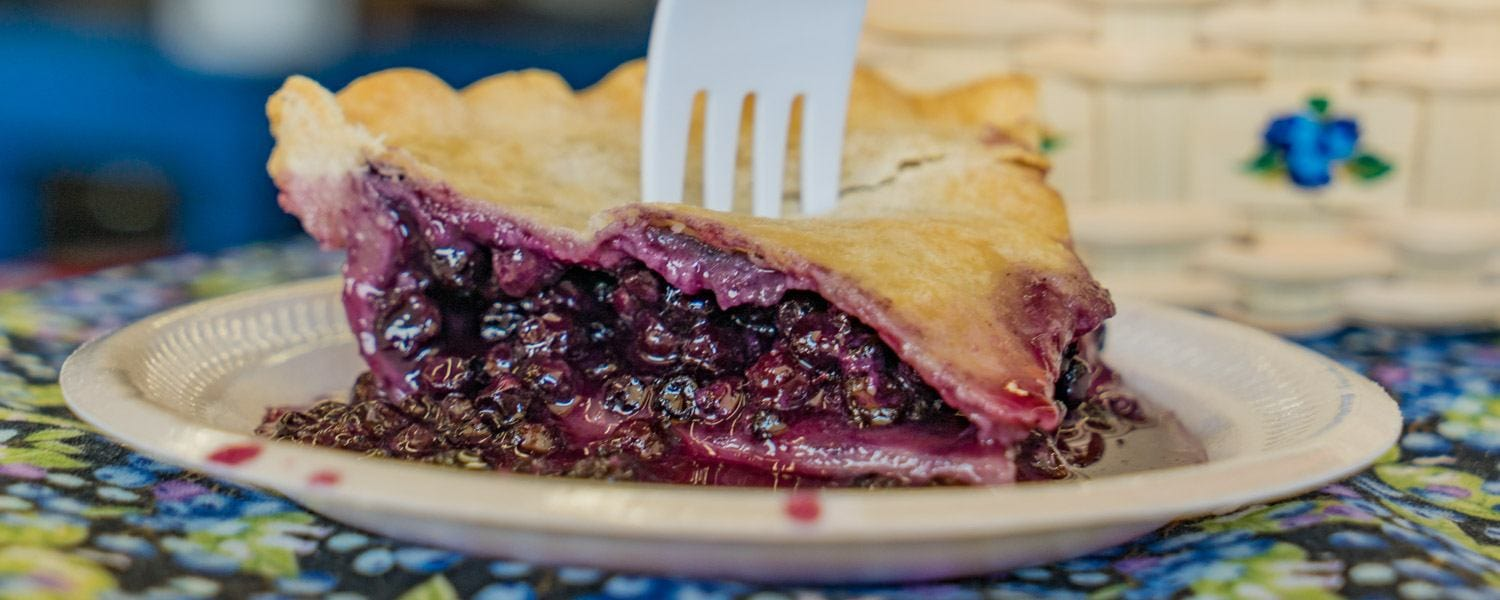 maine blueberry festival