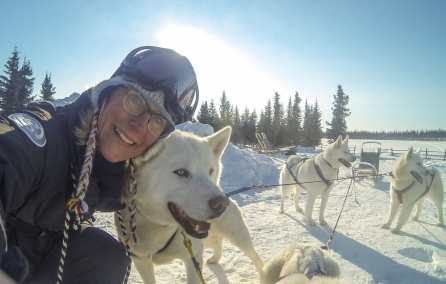 arctic adventure tour dog sledding