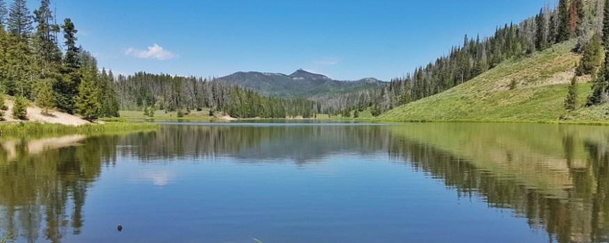 moving to Denver Colorado3-01