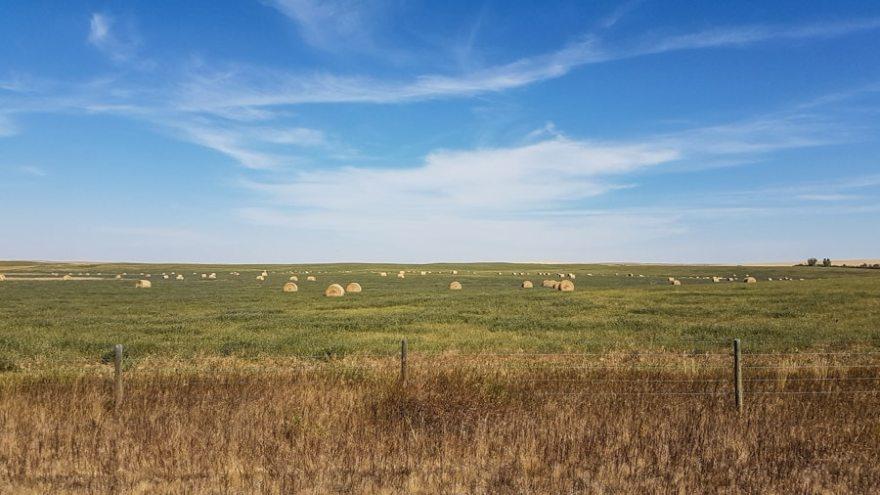 Canadian Badlands farming