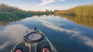 Kayak California delta