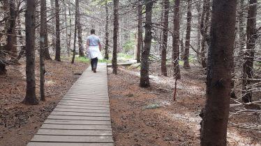 middle head hike