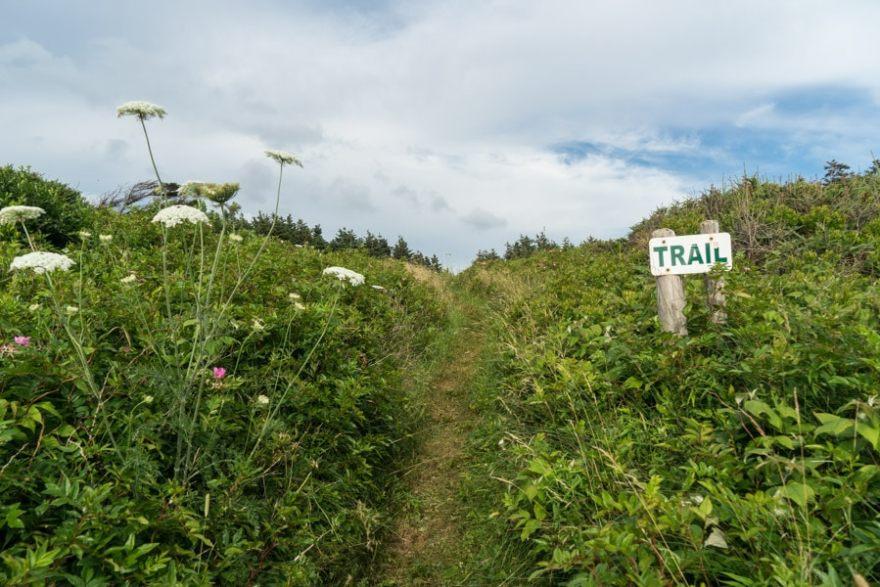 cape breton hikes