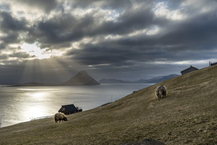 faroe islands sunset